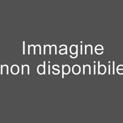 QuickScan I QM2400